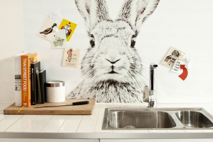 Kitchen Decor and Kitchen Wall Ideas. Best Inspirations in Photos