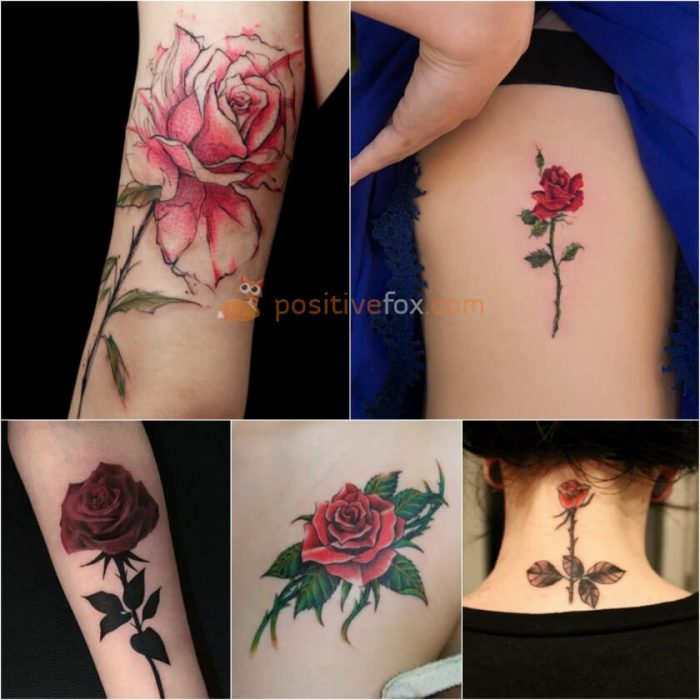Rose Tattoos. Rose Tattoo Ideas. Rose with Thorns Tattoo