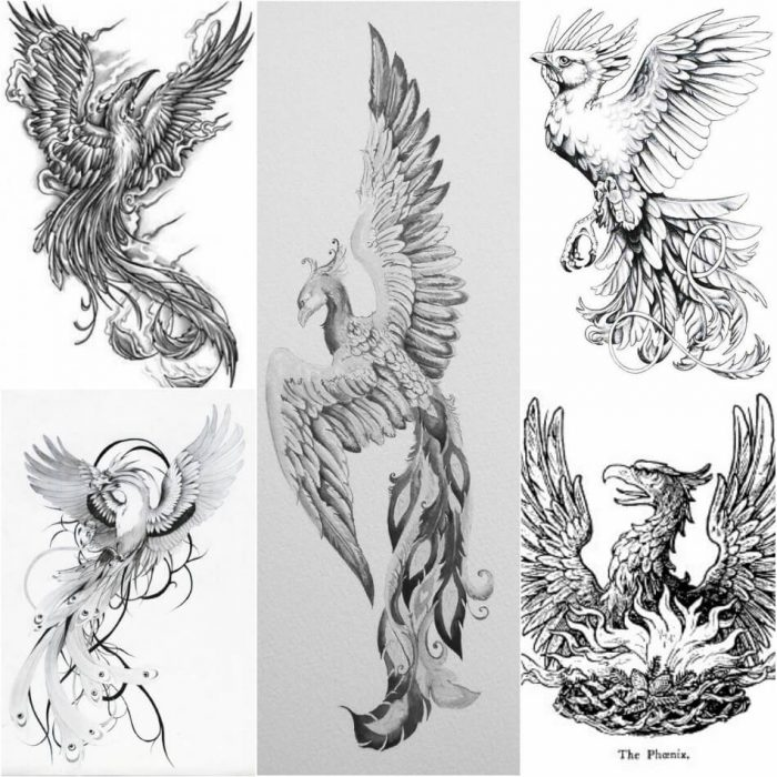 Phoenix Tattoo Sketch - Phoenix Tattoos - Phoenix Tattoo Ideas - Phoenix Tattoo Meaning