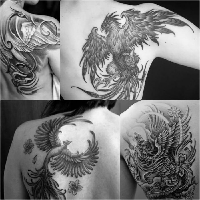 Phoenix Tattoo on Shoulder Blade - Phoenix Tattoos - Phoenix Tattoo Ideas - Phoenix Tattoo Meaning