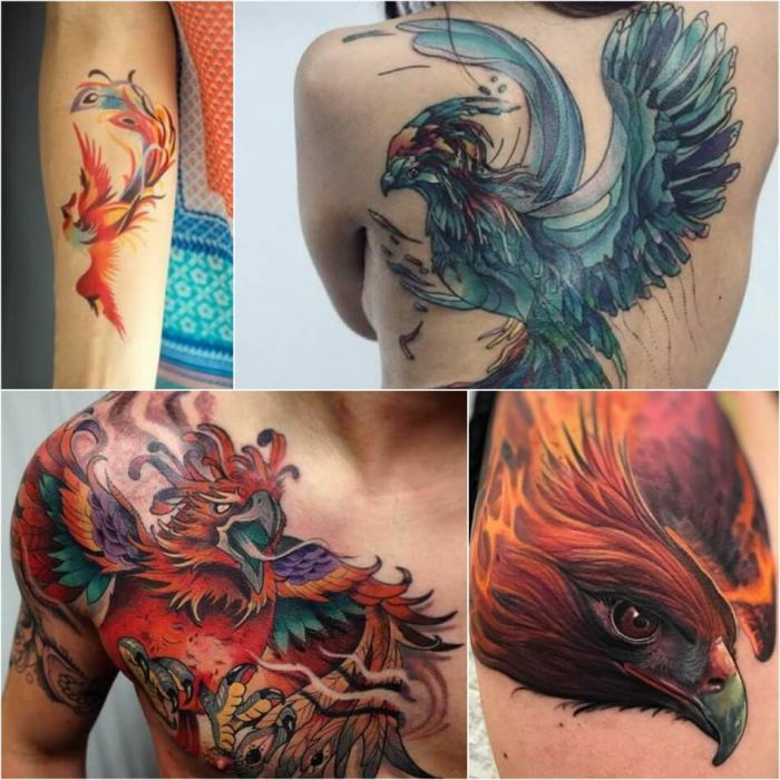 Phoenix Tattoos - Phoenix Tattoo Ideas - Phoenix Tattoo Meaning