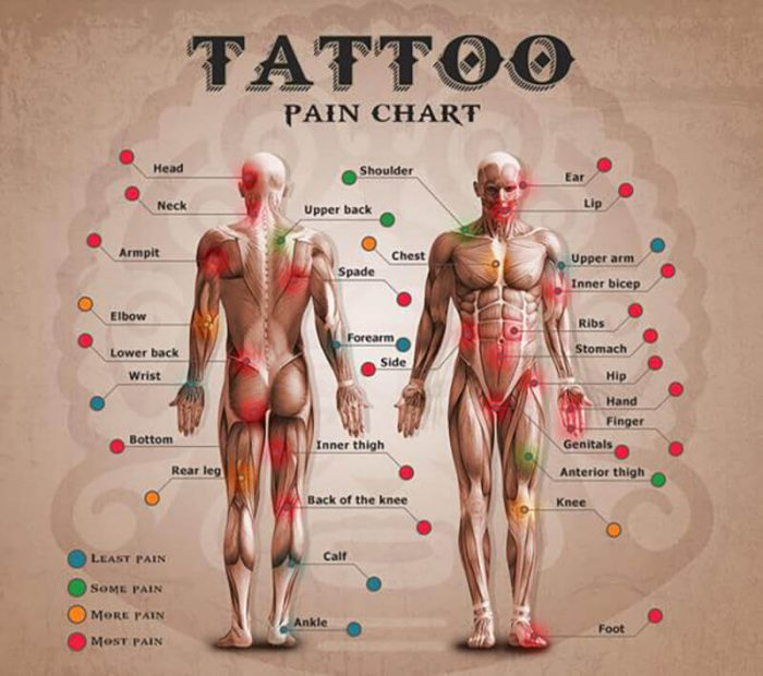Tattoo Pain Chart - Tattoo Pain Scale - Tattoo Pain Map