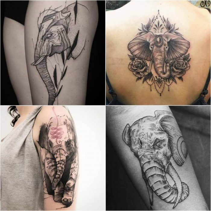 Elephant Tattoo Designs - Most Popular Elephant Tattoos