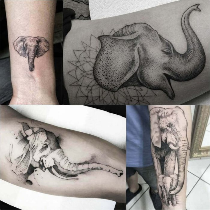 Elephant Tattoos for Men - Elephant Tattoo Meaning - Elephant Tattoo Ideas