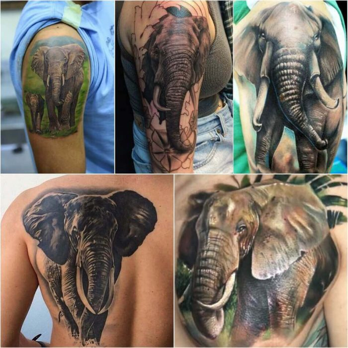 Realistic Elephant Tattoo - Elephant Tattoo Meaning - Elephant Tattoo Ideas