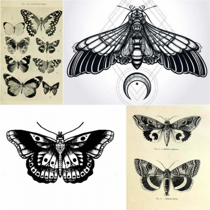 Butterfly Tattoo Designs - Butterfly Tattoo Ideas - Butterfly Tattoo Meaning