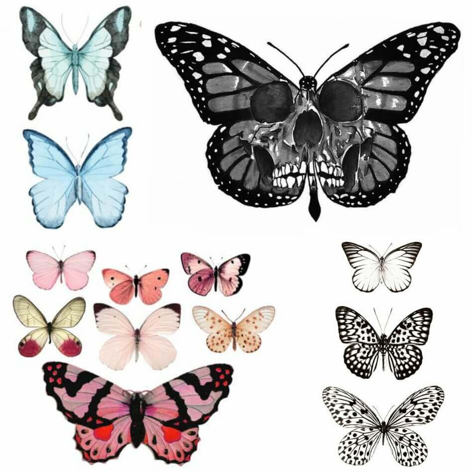 Butterfly Tattoo Designs - Butterfly Tattoo Ideas - Butterfly Tattoo Meaning