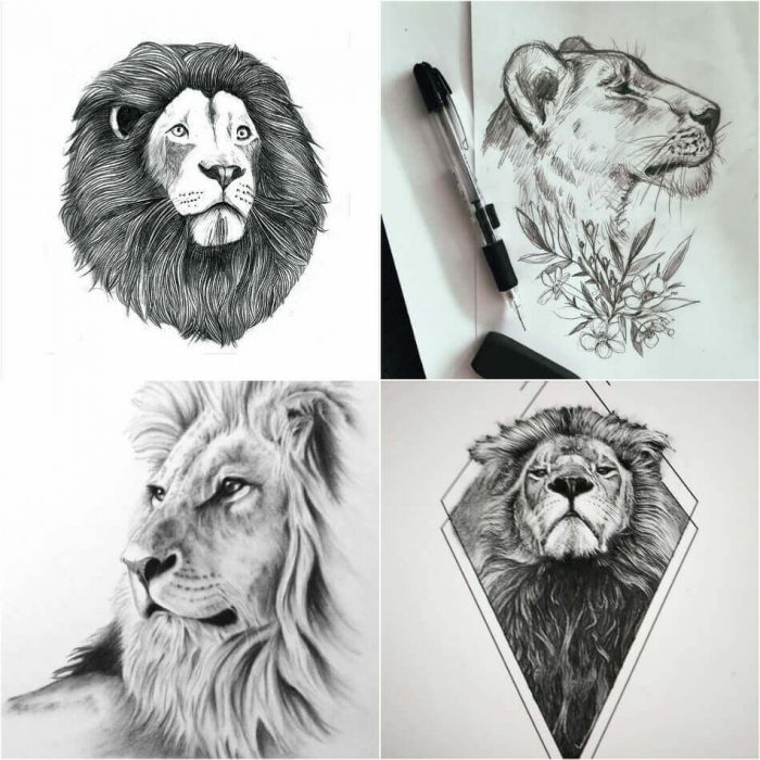 Lion Tattoo Designs - Lion Tattoo Sketch - Lion Tattoo Meaning - Lion Tattoo Ideas