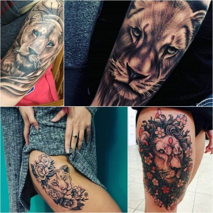 Lion Tattoo for Women - Lion Tattoo for Girl - Lion Tattoo Meaning - Lion Tattoo Ideas - Lion Tattoo Designs