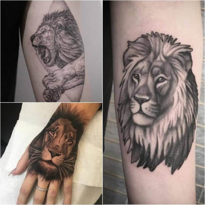 Lion Tattoo on Arm - Arm Lion Tattoo - Lion Tattoo Meaning - Lion Tattoo Ideas - Lion Tattoo Designs
