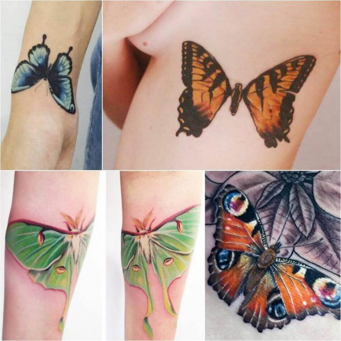 Realistic Butterfly Tattoo - Butterfly Tattoo Ideas - Butterfly Tattoo Meaning
