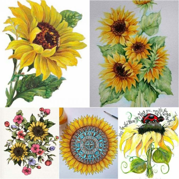 Sunflower Tattoo Designs - Sunflower Tattoo Sketch - Sunflower Tattoo Ideas - Sunflower Tattoo Meaning