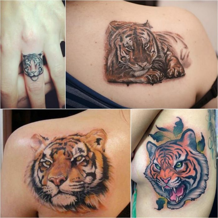 tiger tattoos - tiger tattoos for females - tiger tattoo small