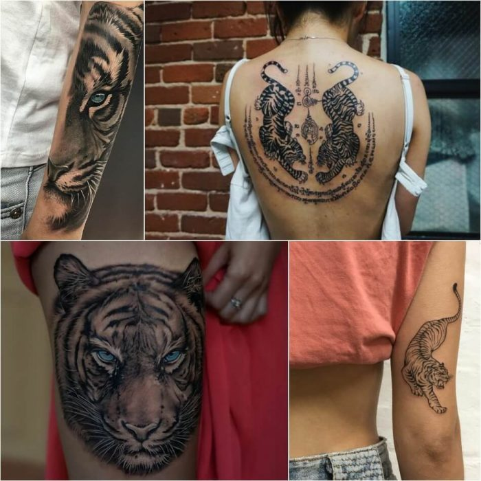 tiger tattoos - tiger tattoos for females - tiger tattoos meaning