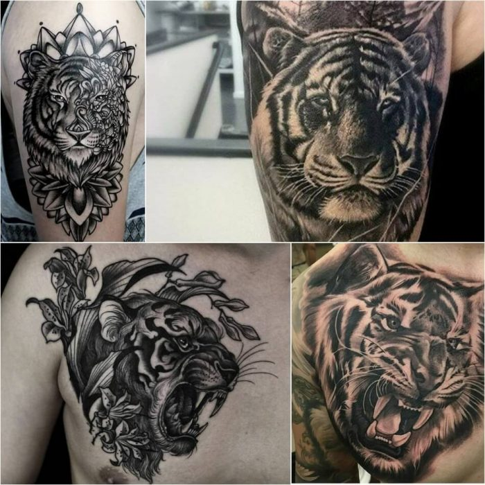 tiger tattoos - tiger tattoos for men - tiger tattoos meaning