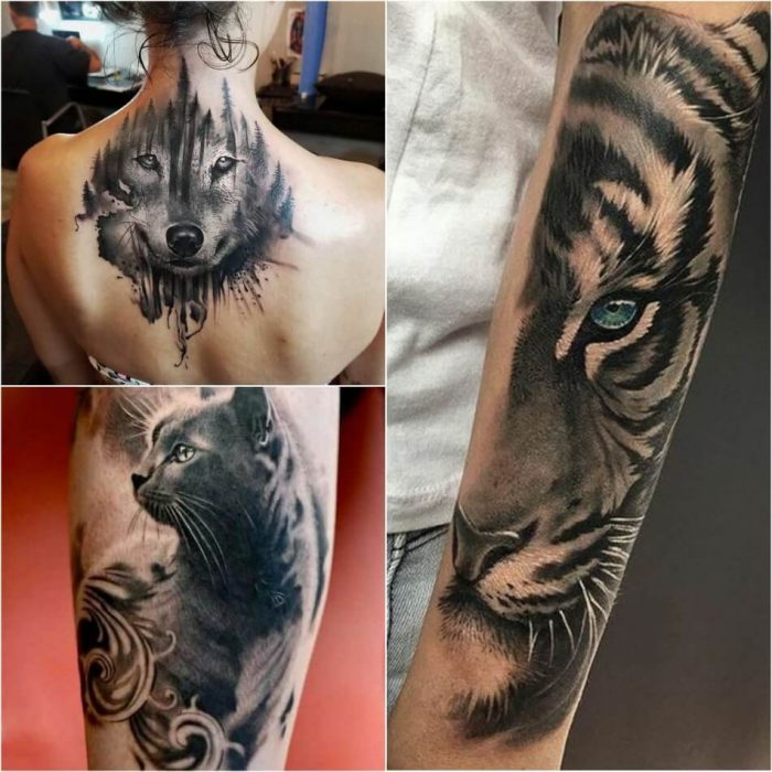 tattoo realism - hyper realistic tattoos - realistic animals tattoos