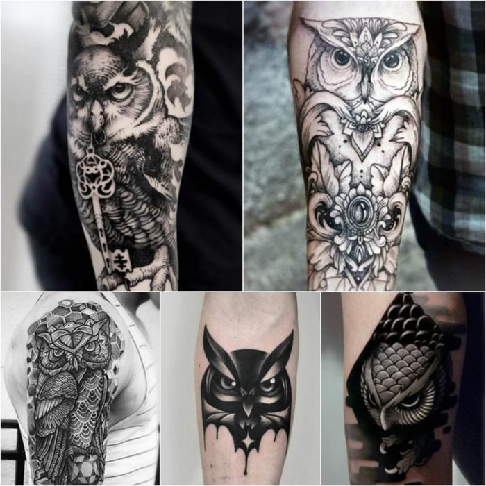 owl tattoo - owl tattoos black and grey - owl tattoos on arm