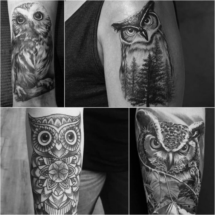 owl tattoo - owl tattoos black and grey - realistic owl tattoo
