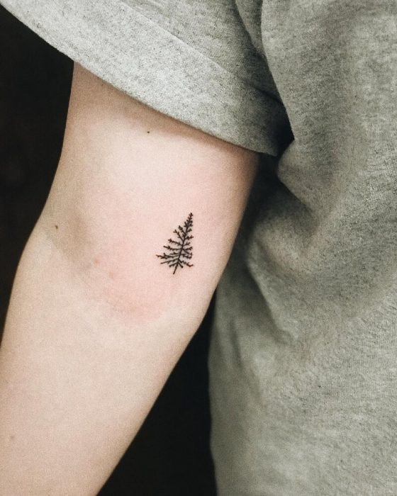 tree tattoos - simple tree tattoos - tree tattoos on arm