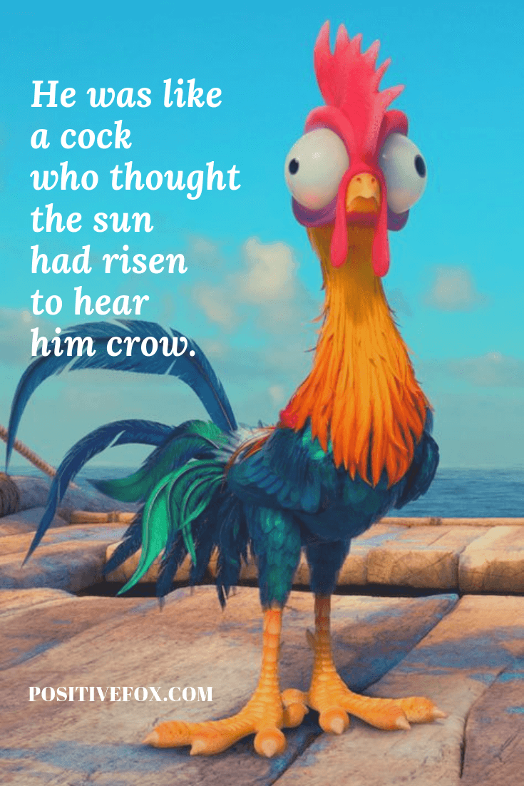 funny quotes - short funny quotes - He was like a cock who thought the sun had risen to hear him crow